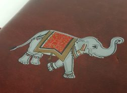 MED-JNL-ELEPHANT-PAINT-DRAWOING